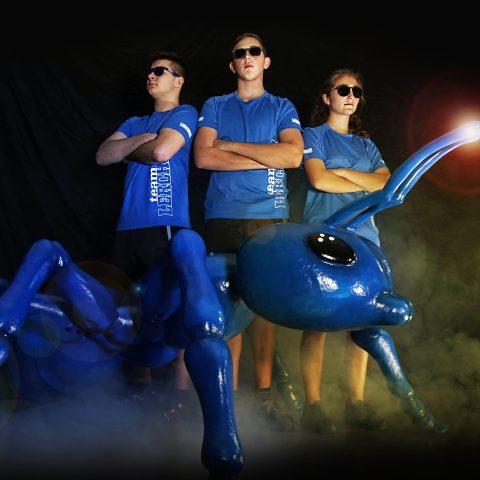 Das Geheimnis der blauen Ameisen